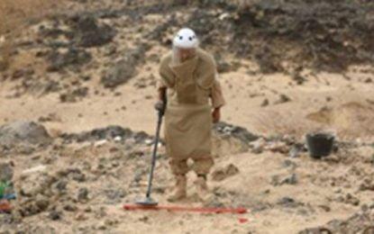 Saudi officials condemn Iran over its role in Yemen
